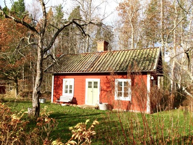 Torp, höst, vintageprylar, trädgård, rött hus, vita knutar