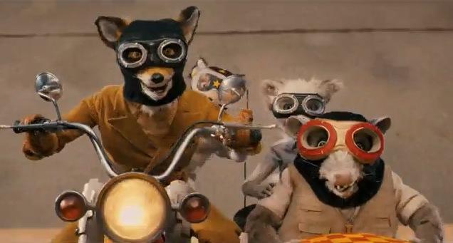 Mr Fox6
